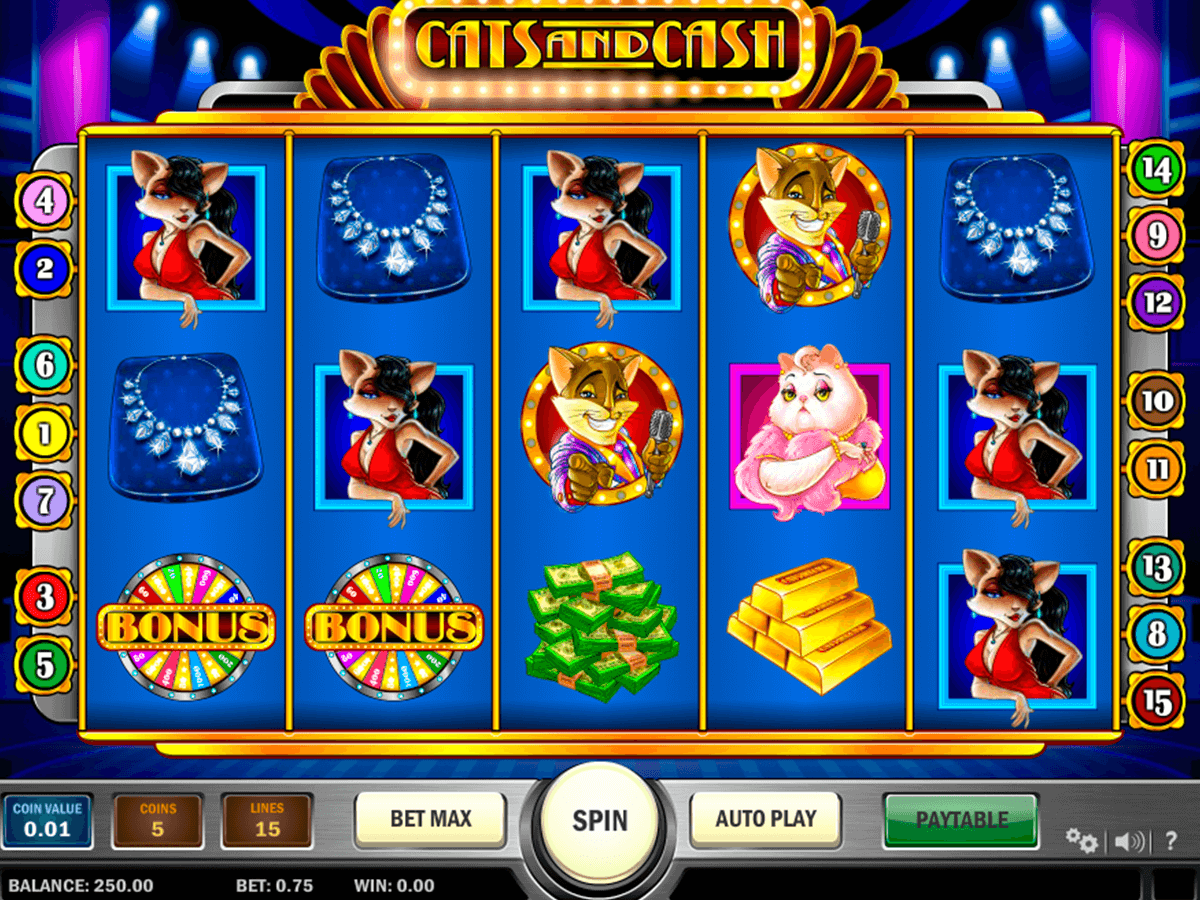 cats and cash playn go machine a sous