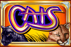 Logo cats igt jeu casino
