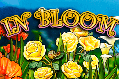 Logo in bloom igt jeu casino