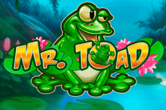 Logo mr toad playn go jeu casino