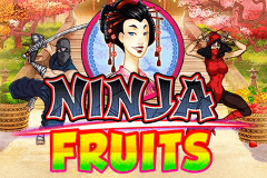 Logo ninja fruits playn go jeu casino