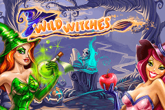 Logo wild witches netent jeu casino