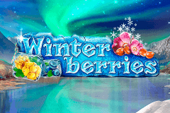 Logo winterberries yggdrasil jeu casino