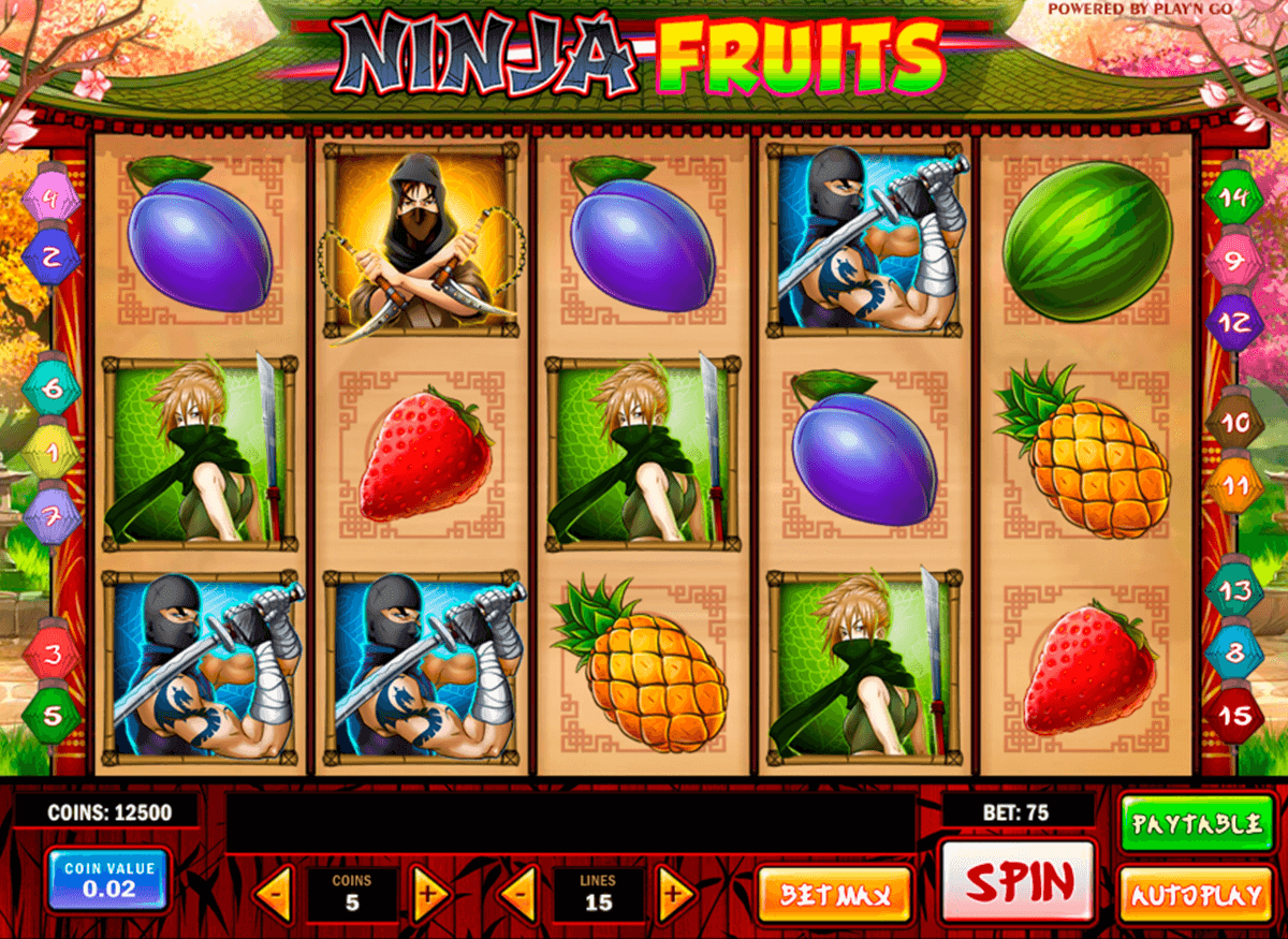 ninja fruits playn go machine a sous